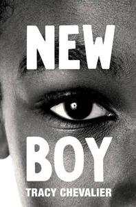 Book - New Boy