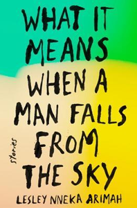Book - What It Means When A Man Falls From The Sky